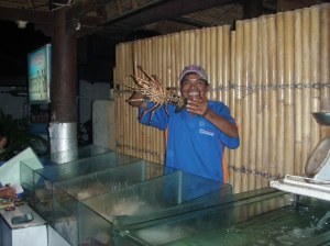 The daily catch in Jimbaran Bay